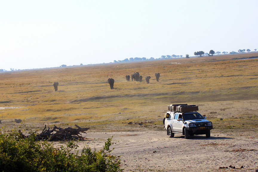 Savuti - Chobe National Park