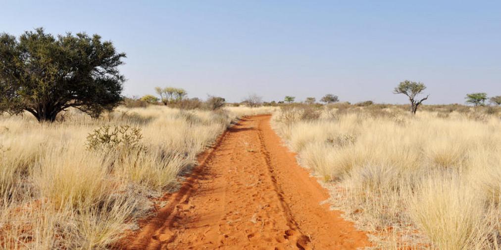 Kalahari Nord