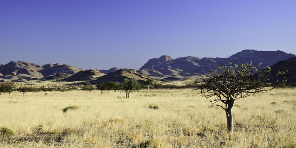 Sesfontein